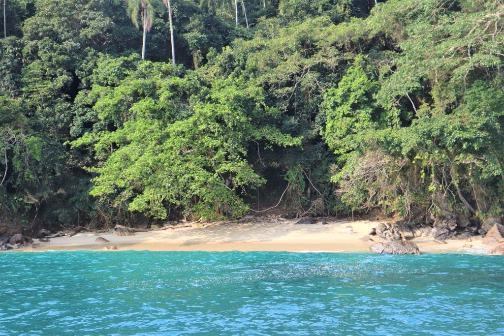 Ilha da Gipoia Praia de Juruba - Tartaruga