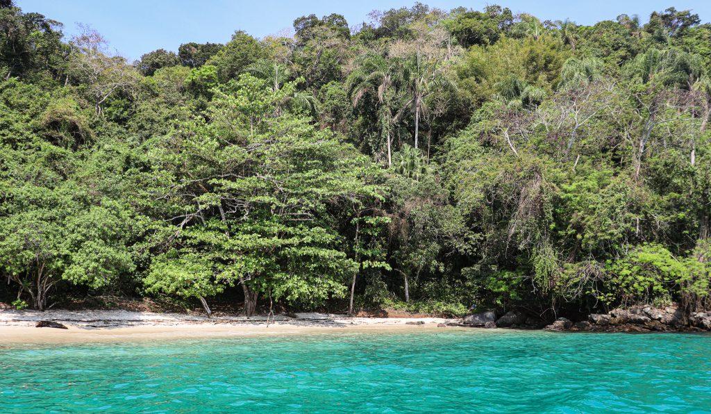 Praia de Grumixama - Ilha Grande - Angra dos Reis